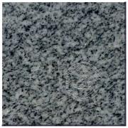 Oriental Grey